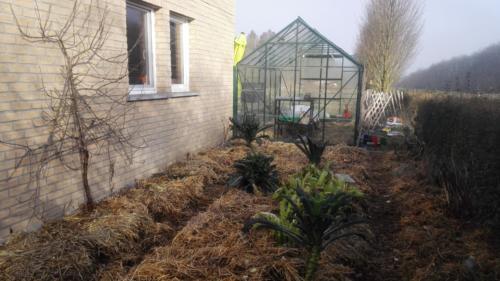 Nos jardins en Janvier