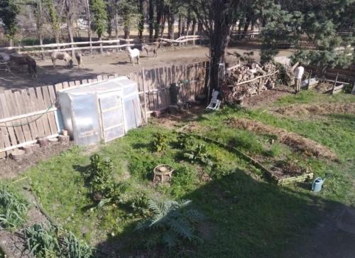 Jardin de Shua, Occitanie